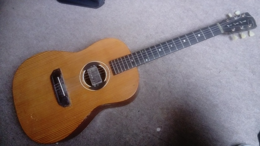 Martin Coletti G40 2/4 size flat-top acoustic guitar